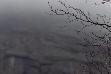 Smokefall - Promo Image W20 - winter landscape scene